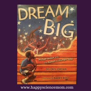 book review dream big graphic