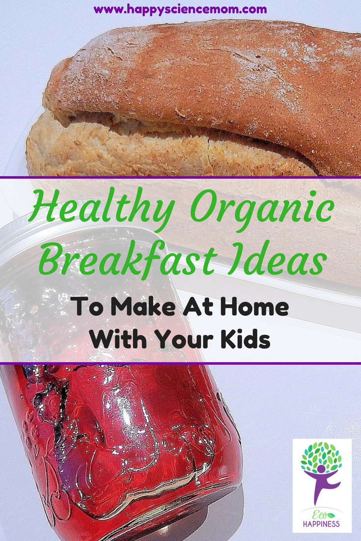 Healthy Organic Breakfast Ideas To Make At Home With Your Kids.png