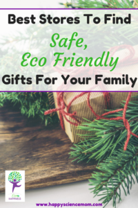 Best Stores To Find Safe, Eco Friendly Gifts For Your Family